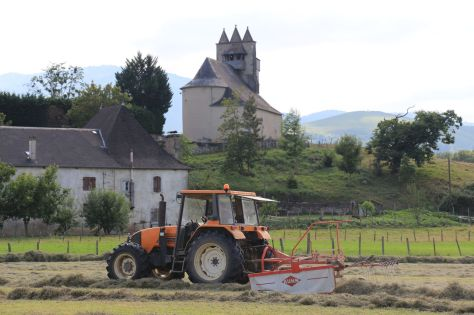 Our next door neighbour harvesting hay