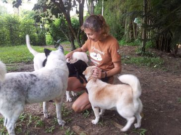 At Chiang Mai Dog Rescue Centre